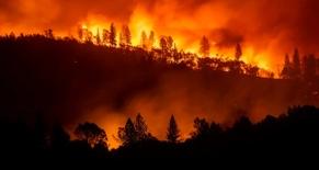 PG&E Lawsuit | Wildfires Lawsuit